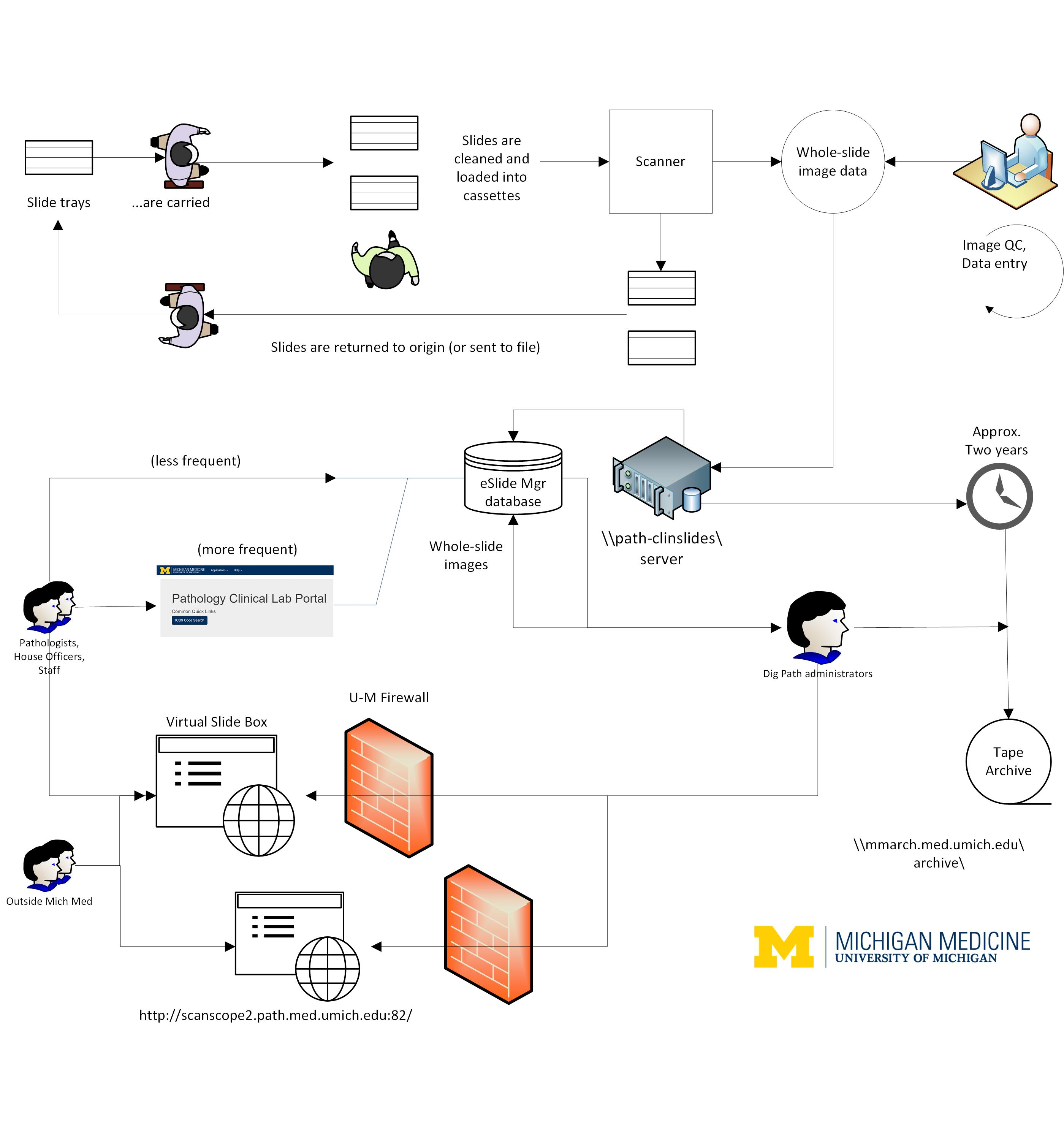 Dig Path website front flow diagram_large.jpg
