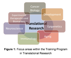 Focus Areas Within the Training Program in Translational Research.png